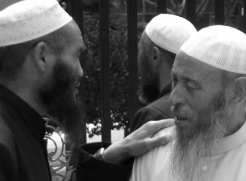 Chinese Muslims in Nigxia