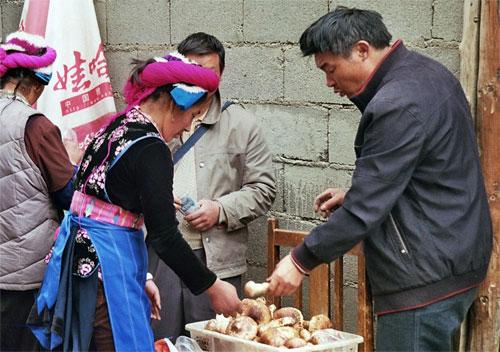 Mushroom sellers in Zhongdian/ Dukezong