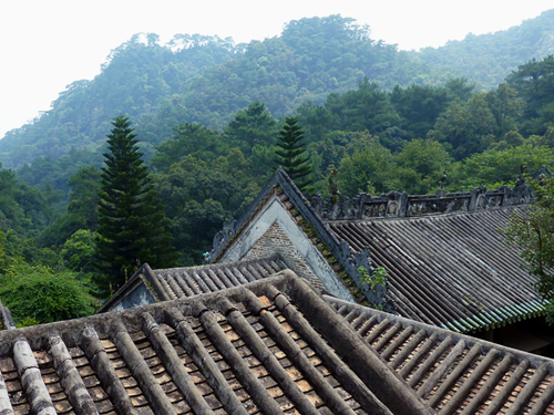fei Xia