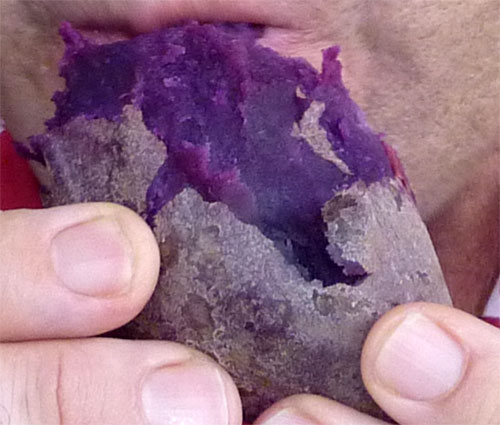 The Purple Potato