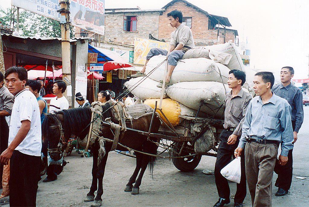 Anshun Sunday Market: 安顺星期七农民市场 overloaded horse