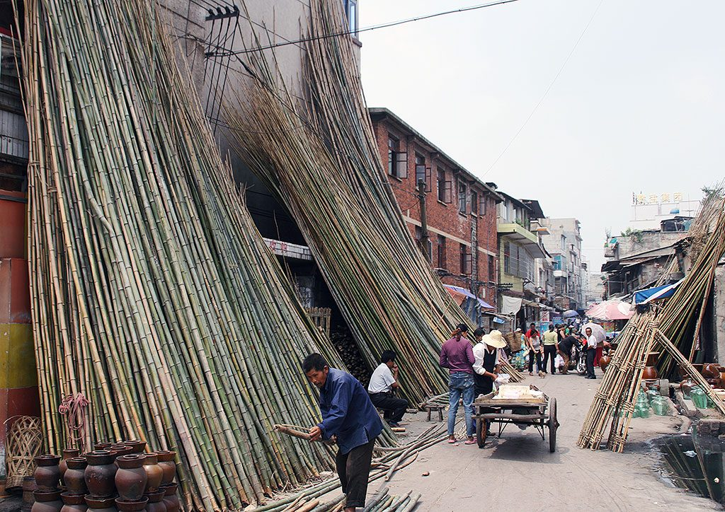 buying bamboo ples Anshun Sunday Market: 安顺星期七农民市场