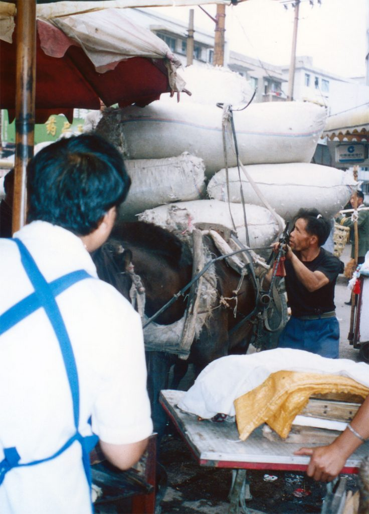 overloaded horse Anshun Sunday Market: 安顺星期七农民市场
