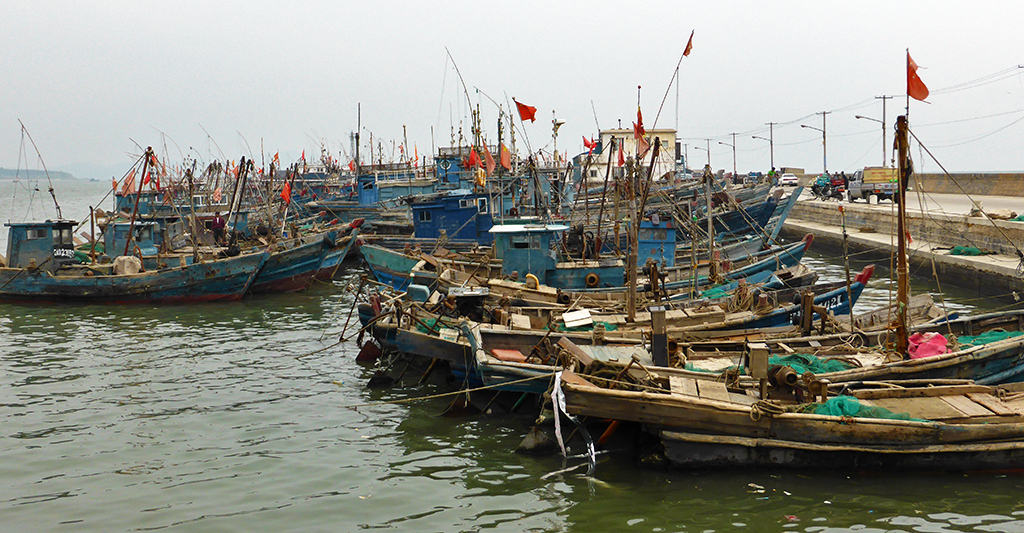fishing boats Xincheng