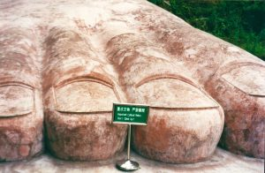 The Foot of The Giant Buddha at Leshan