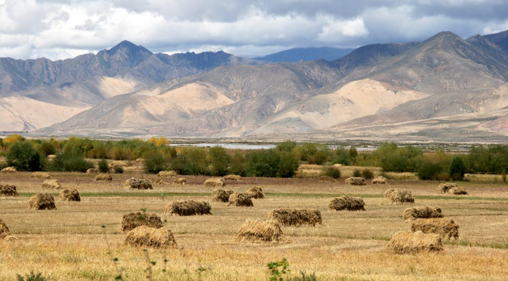 Countyside Tibet