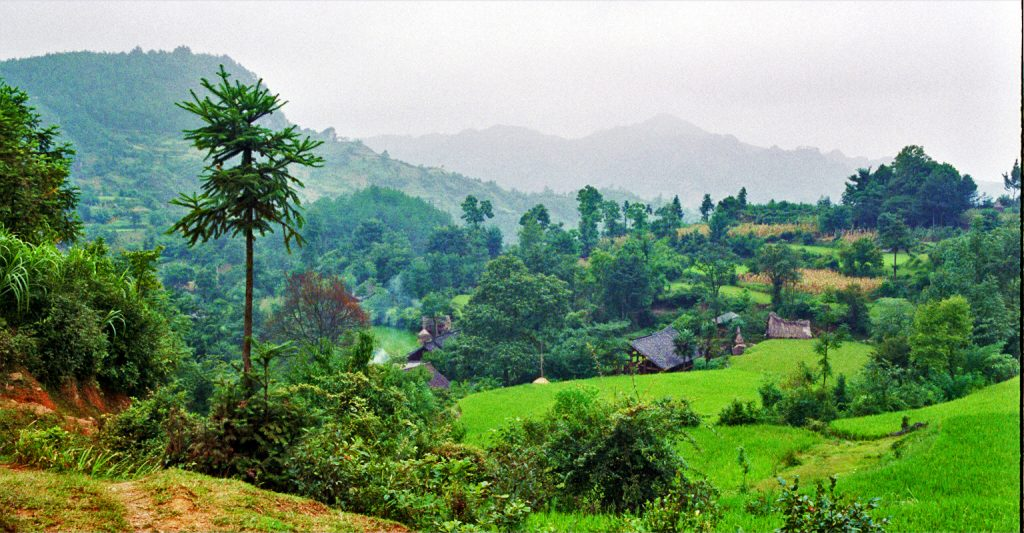 Beautiful Bucolic Landscape Matang