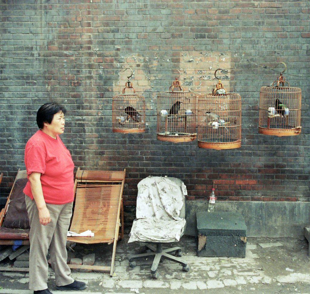 Beijing Hutong 2005