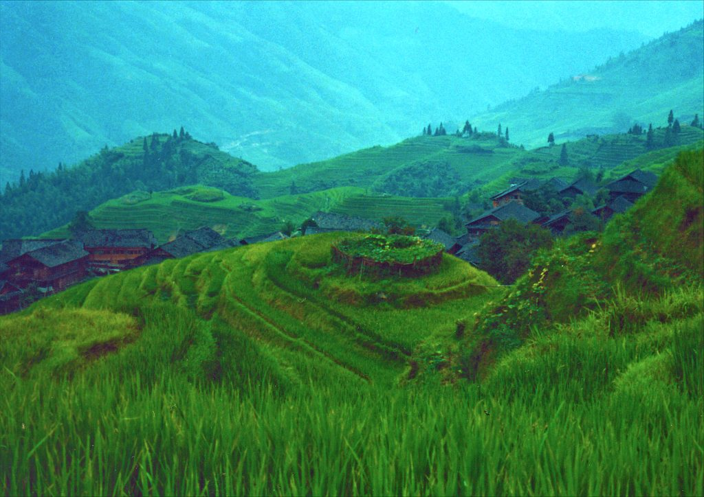 Overview of Dragon Backbone Rice terraces