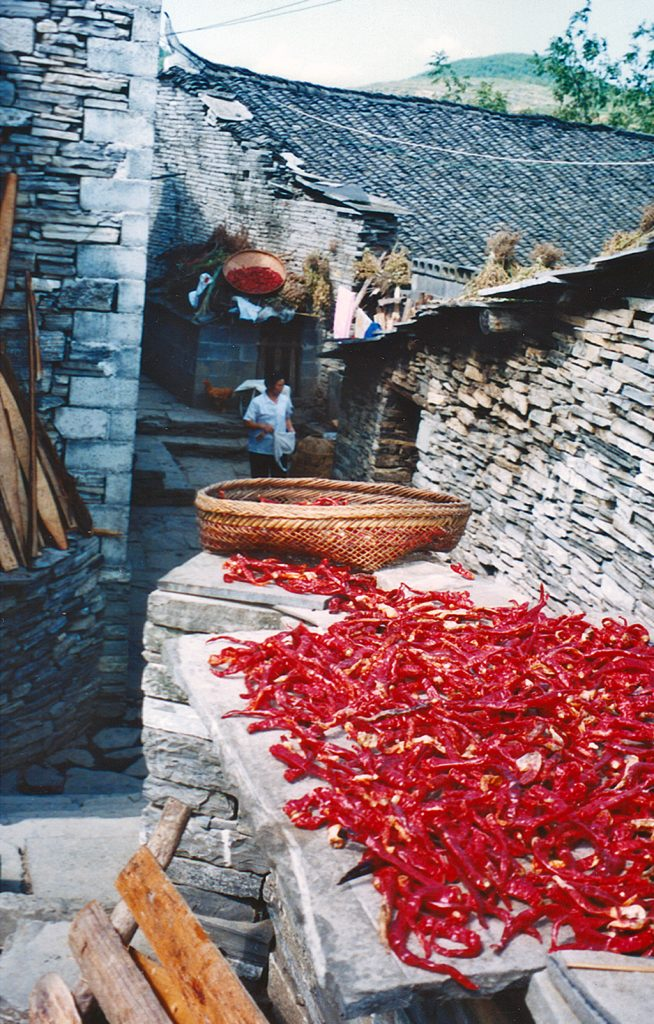 Drying Chilis the Southern Great Wall