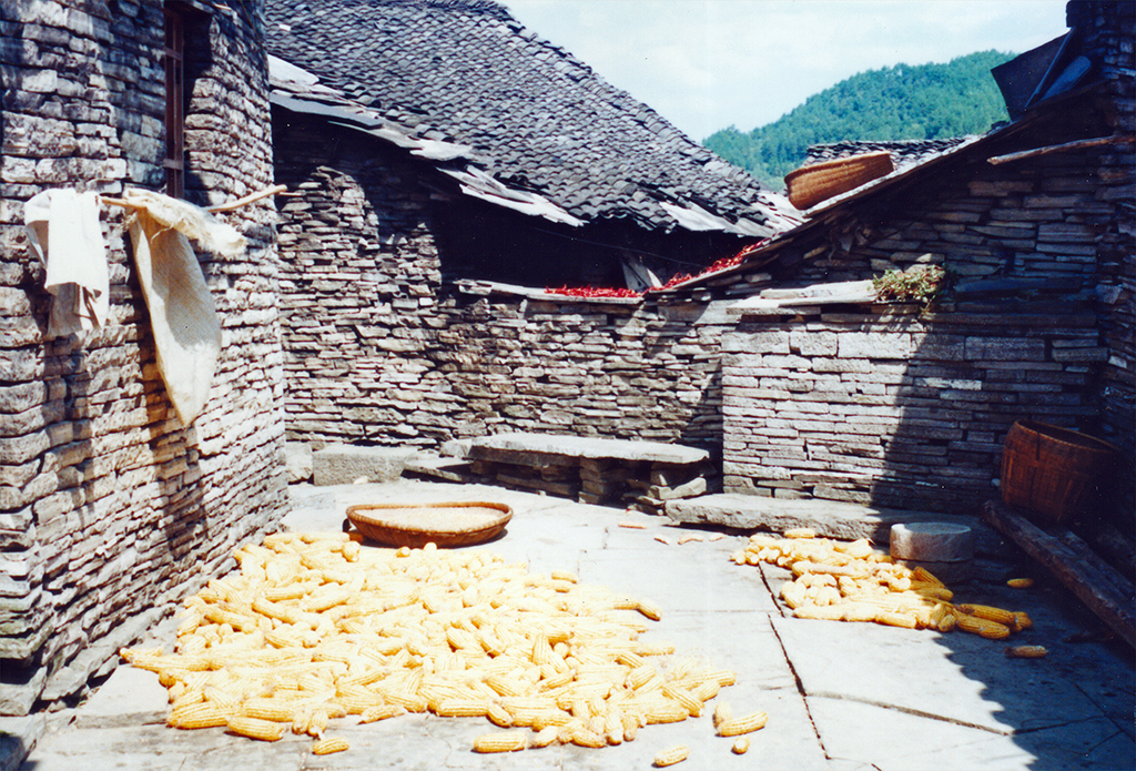 Drying Corn the Southern Great Wall