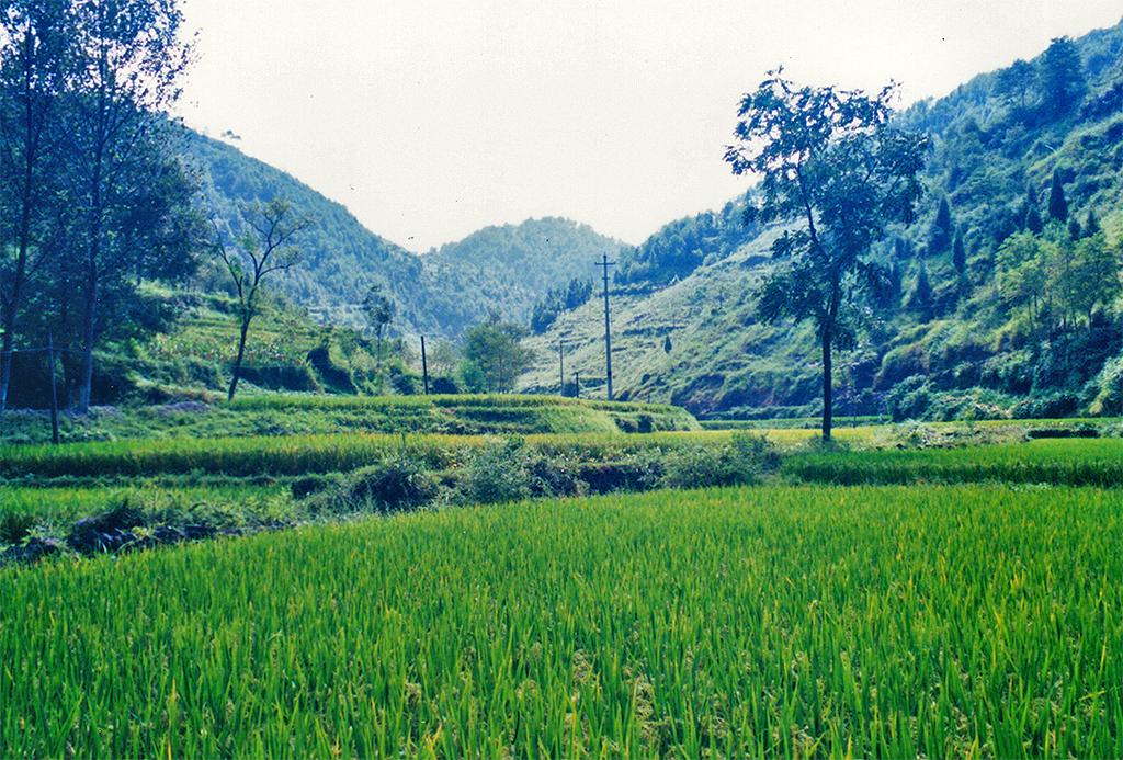 Scenery near Huangsi Qiao
